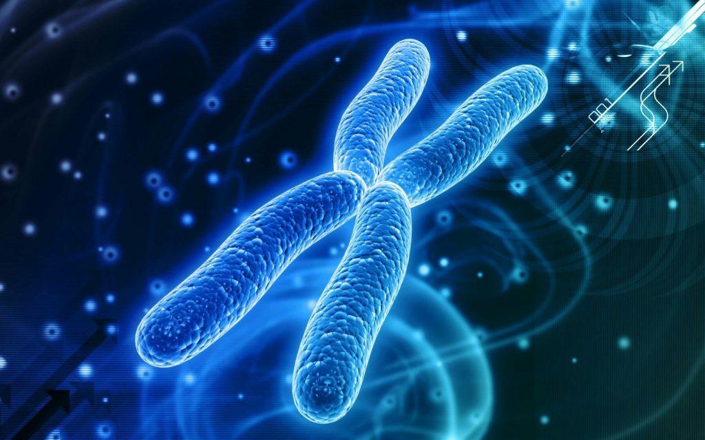 Hudi Pharma Cell & Gene Therapy